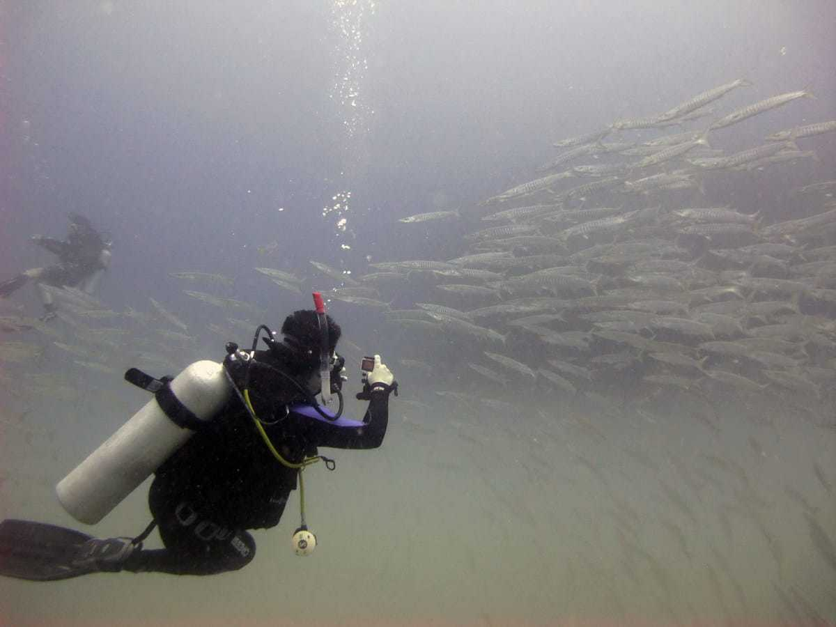 open water dive site